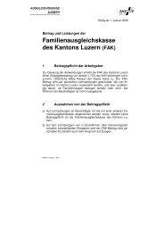 Merkblatt FAK-AN-LU 2008