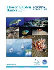 2008 Condition Report - Flower Garden Banks National Marine ...
