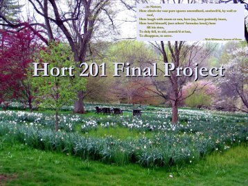 Hort 201 Final Project