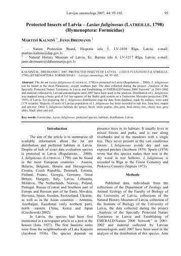 Protected Insects of Latvia – Lasius fuliginosus (LATREILLE, 1798 ...