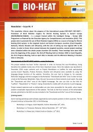 BIO-HEAT_Newsletter IV _English