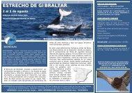 ESTRECHO DE GIBRALTAR - SEO/BirdLife