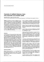 Expression of Antibiotic Resistance Genes from Escherichia coli in ...