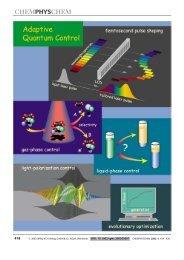 Quantum control of gas-phase and liquid-phase - Institut für ...