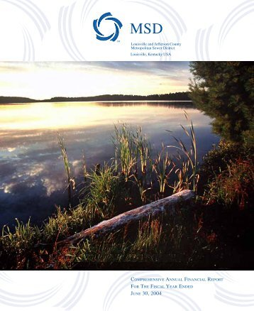 Comprehensive Annual Financial Report 2004 - MSD