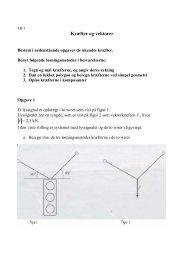Opgaver til tværfagligt projekt.pdf