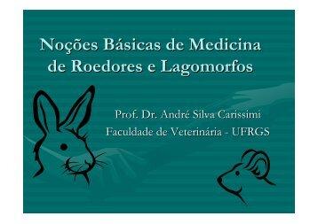 Noções Básicas de Medicina de Roedores e Lagomorfos - SOVERGS