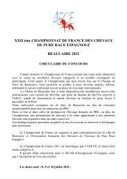 XXII ème CHAMPIONNAT DE FRANCE DES CHEVAUX DE ... - Ancce