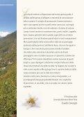 paesi valle anzasca - cai sezione villadossola - Page 3