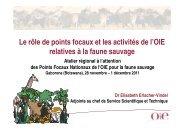 Le rôle de points focaux et les activités de l'OIE relatives ... - OIE Africa