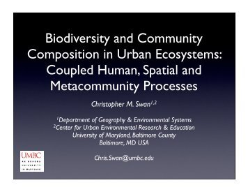 Biodiversity and Community Composition in Urban Ecosystems ...
