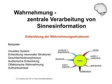 Wahrnehmung - mehrke.de