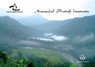 arunachal pradesh innovates - National Innovation Foundation