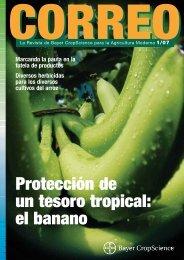 Protección de un tesoro tropical: el banano