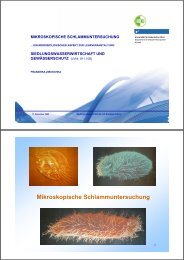 alte powerpointfolien kapitel 12 / 07.11.2012 - Department Wasser ...