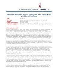 Génomique microbienne pour des biocarburants ... - Genome Canada