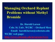 Managing Orchard Replant Problems without Methyl ... - Utahhort.org