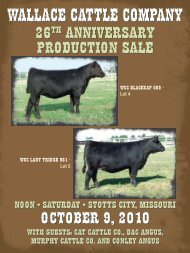WALLACE CATTLE COMPANY - Angus Journal