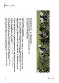 Nr. 3   2007 - bei swissendurance.ch! - Seite 4