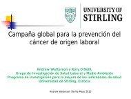 Campaña global para la prevención del cáncer de origen laboral
