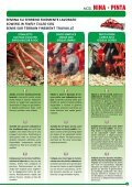 Leaflet seed drills - Maschio - Page 3