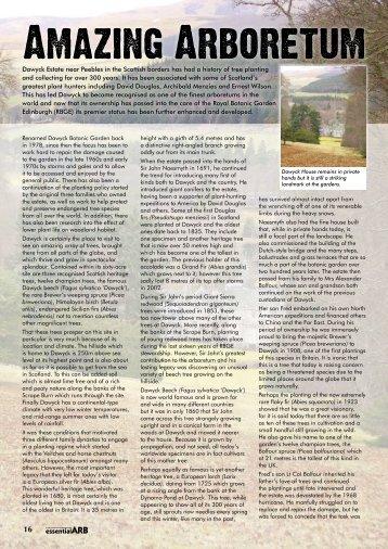 Dawyck Arboretum - Forestry Journal