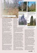 Dawyck Arboretum - Forestry Journal - Page 2