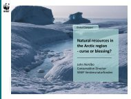 Natural resources in the Arctic region - Global Compact Nordic ...