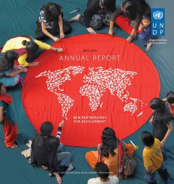 UNDP_AR2014_english