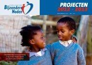 projecten 2012 - 2013 - Bijzondere Noden