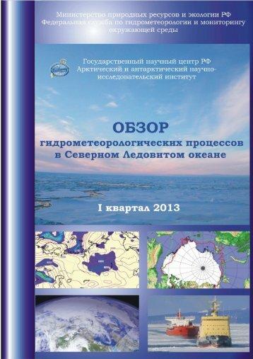 pdf - Арктический и антарктический НИИ
