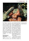 weiterlesen - Taucher Revue - Page 4