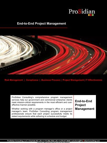 ProSidian Consulting Program & Project Management Solution Set.pdf