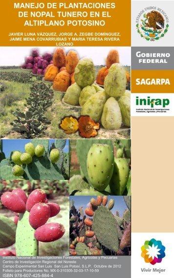 manejo de plantaciones de nopal tunero en el ... - INIFAP Zacatecas
