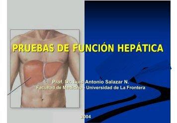 FUNCION HEPATICA - Facultad de Medicina UFRO - Universidad ...
