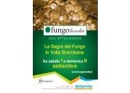 Senza titolo-1 - L'Eco di Bergamo