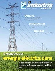energía eléctrica cara - Revista Industria y Negocios – CIG