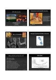 ACL Bookmarks Biomechanics in vitro/in vivo