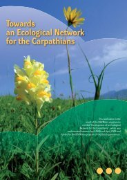 Towards an Ecological Network for the Carpathians
