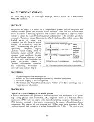 walnut genome analysis - Walnut Research Reports - the University ...