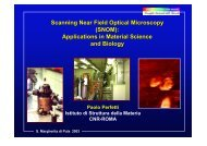 Scanning Near Field Optical Microscopy (SNOM): Applications in ...
