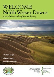 You can download a copy here - North Wessex Downs Area of ...