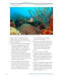 Climate Change Action Plan for the Florida Reef System 2010-2015 - Page 6