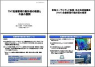 TNT危機管理行動計画の概要と 今後の展開 - NHRI 名古屋流域圏水理 ...