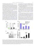 Syndecan-1 regulates BMP signaling and dorso-ventral patterning ... - Page 6