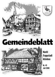 Gemeindeblatt Juli 2008 - Markt Trappstadt