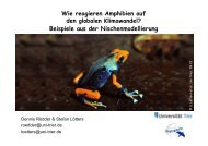 Beispiele aus der Nischenmodellierung - Zoo Frankfurt