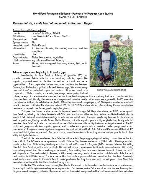 P4P Case Study, Ethiopia, Farmer, Kenasa Folisie June 2010