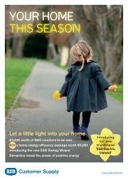 Your home this season - Electric Ireland