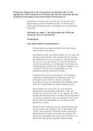 Protocolo Adicional a los Convenios de Ginebra del 12 de agosto ...